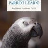 How many words can a parrot learn?