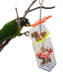 Tropical Chickens Parrot Bird Boredom Buster Forage Box Creative Hanging Treat Foraging Toy Conure Cockatiel Small and Medium Bird Enrichment Transparent Acrylic Food Holder